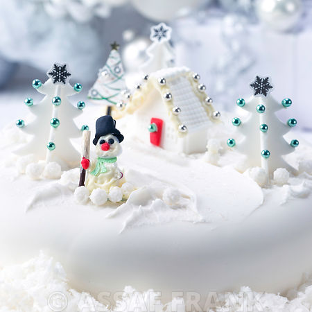 Christmas cake with snow scene