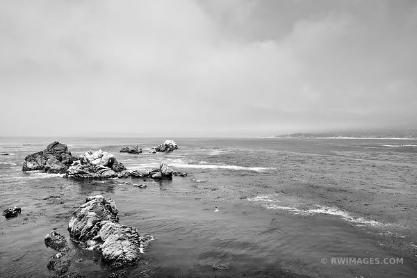 POINT LOBOS CALIFORNIA BLACK AND WHITE