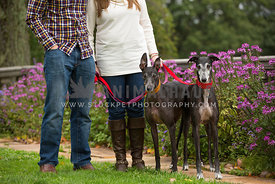 couple standing in garden with two greyhounds