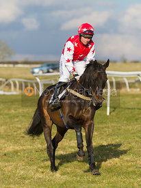 Wee Alfie - The Belvoir at Garthorpe 30th March 2013.