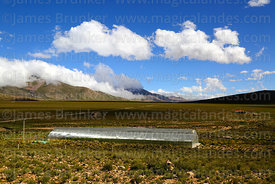 Greenhouse near Vicuñayoj, Cordillera de Sama Biological Reserve, Bolivia