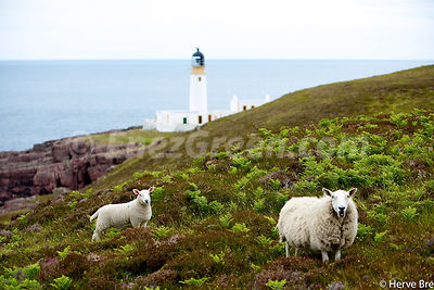 Rua Reidh lighthouse - Scotland