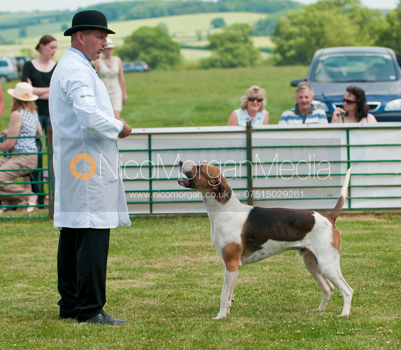 Single Unentered Dog Hound Class, The Blaston Hound Show 2010