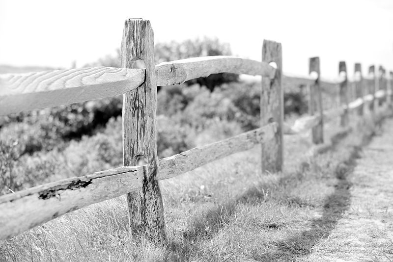 WEATHERED WOODEN FENCE MARTHA'S VINEYARD BLACK AND WHITE