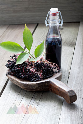 Elderberries (Sambucus), leaves on a wooden shovel and a bottle of elderberry juice on white wooden table, studio shot