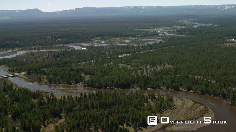 The Madison River flows towards Hebgen Lake near Yellowstone National Park, through recently burned lodgepole pine forest