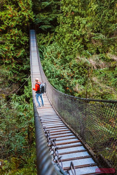 Man walking on suspension bridge, Vancouver, Canada