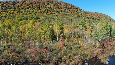 Colourful Leaves of the Forest Labrador Pond New York USA