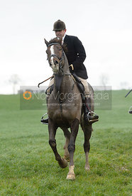 Jamie Collie at Knossington Spinney - The Fitzwilliam Hunt visit the Cottesmore at Burrough House