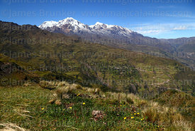 View across valleys and grassland to Chillkani and Mts Illampu (L) and Ancohuma (R), Cordillera Real, Bolivia