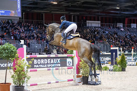 Bordeaux, France, 2.2.2018, Sport, Reitsport, Mercedes-Benz CSI Zurich - Prix FOIRE INTERNATIONALE DE BORDEAUX. Bild zeigt Ed...