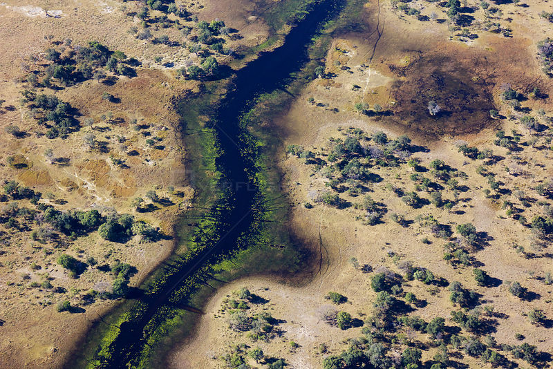 Aerial view of the Okavango Delta with high water levels, Botswana,  June 2014..