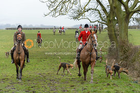 Belvoir Huntsman John Holliday and hounds during a day's hunting