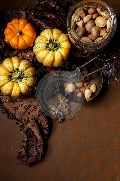 Pumpkin and nuts, fall image