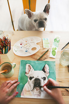 Hand's of artist painting an aquarelle of her French bulldog