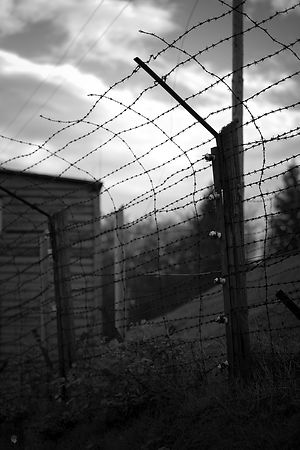 Camp Struthof Natzweiler Barbed wire fence