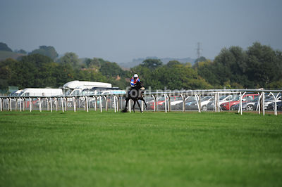 24th Sept 2013 - 2.50pm Novices Hurdle with winner De Faoithesdream