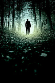 An atmospheric image of The silhouette of a mystery man, from behind, walking through an empty forest.