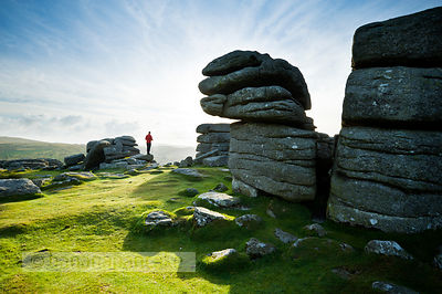 BP2578 - Walker at Combestone Tor, Dartmoor