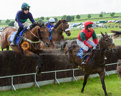 PROXIMO (Jack Andrews) - Race 4 - The Meynell & South Staffs at Garthorpe