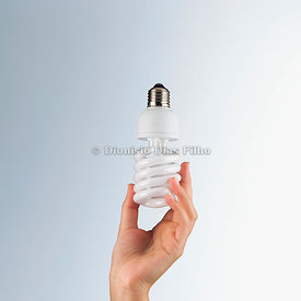 female hand holding light bulb