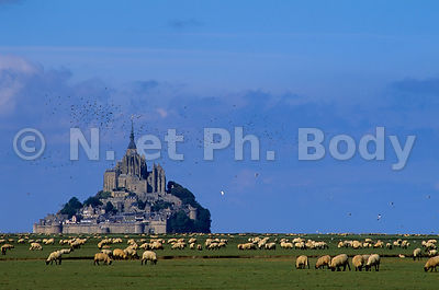 FRANCE, NORMANDIE, MANCHE, MONT SAINT-MICHEL//FRANCE, NORMANDY, MANCHE, MONT SAINT-MICHEL