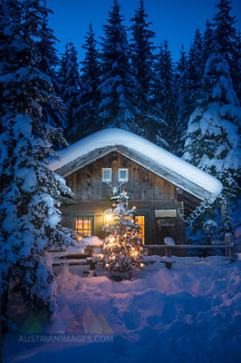 Austria, Altenmarkt-Zauchensee, Christmas tree at illuminated wooden house in snow at night
