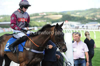 3rd Aug 2013 4.30pm Handicap Hurdle Race with winner Sheriff Hutton
