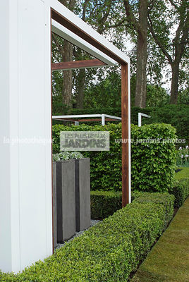 Buxus, Contemporary garden, Digital, Low hedge, Pergola, Trimmed hedge, Common Box