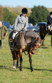 at the meet - Fitzwilliam Hunt Opening Meet 2016