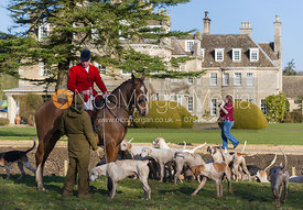 Cottesmore Huntsman Andrew Osborne MFH and hounds