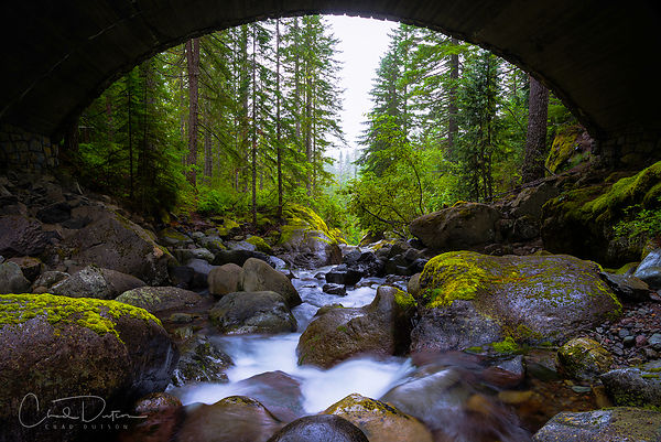 Bridge Below Rainier