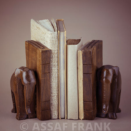 Wooden elephant book shelf
