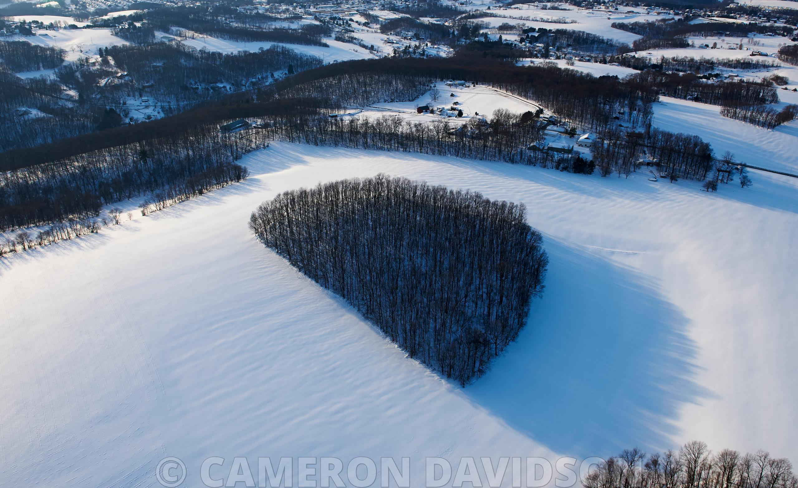 Aerial of Trees along the Susquehanna