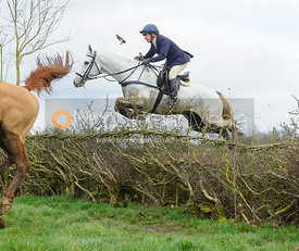 Clare Bell jumping a hedge above Klondike