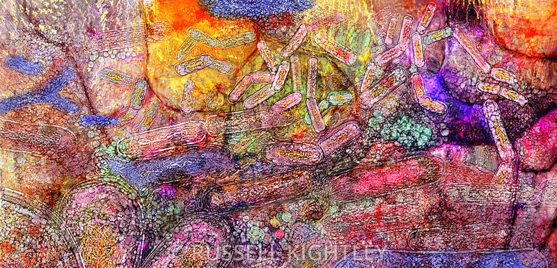 Microbiota Abstract Watercolour