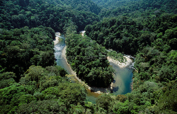 Aerial view of the upper reaches of the Chagres river, Panama, Central America 2006