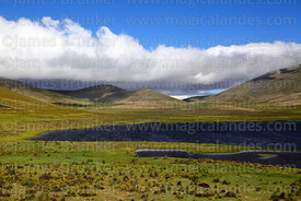 View over Laguna Patancas near Pujzara, Cordillera de Sama Biological Reserve, Bolivia