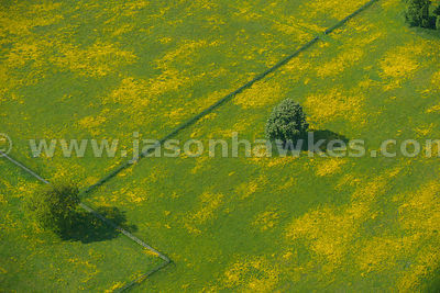 Aerial views of fields in Buckinghamshire