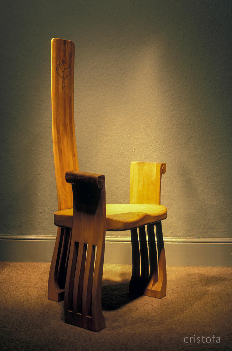 3/4 view of the 'Caspian' elm chair