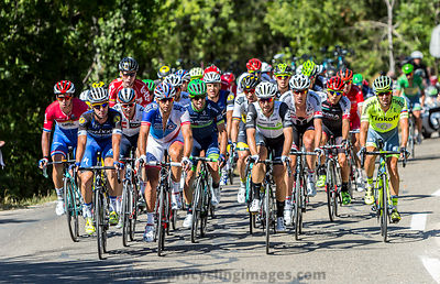 The Peloton on Mont Ventoux - Tour de France 2016