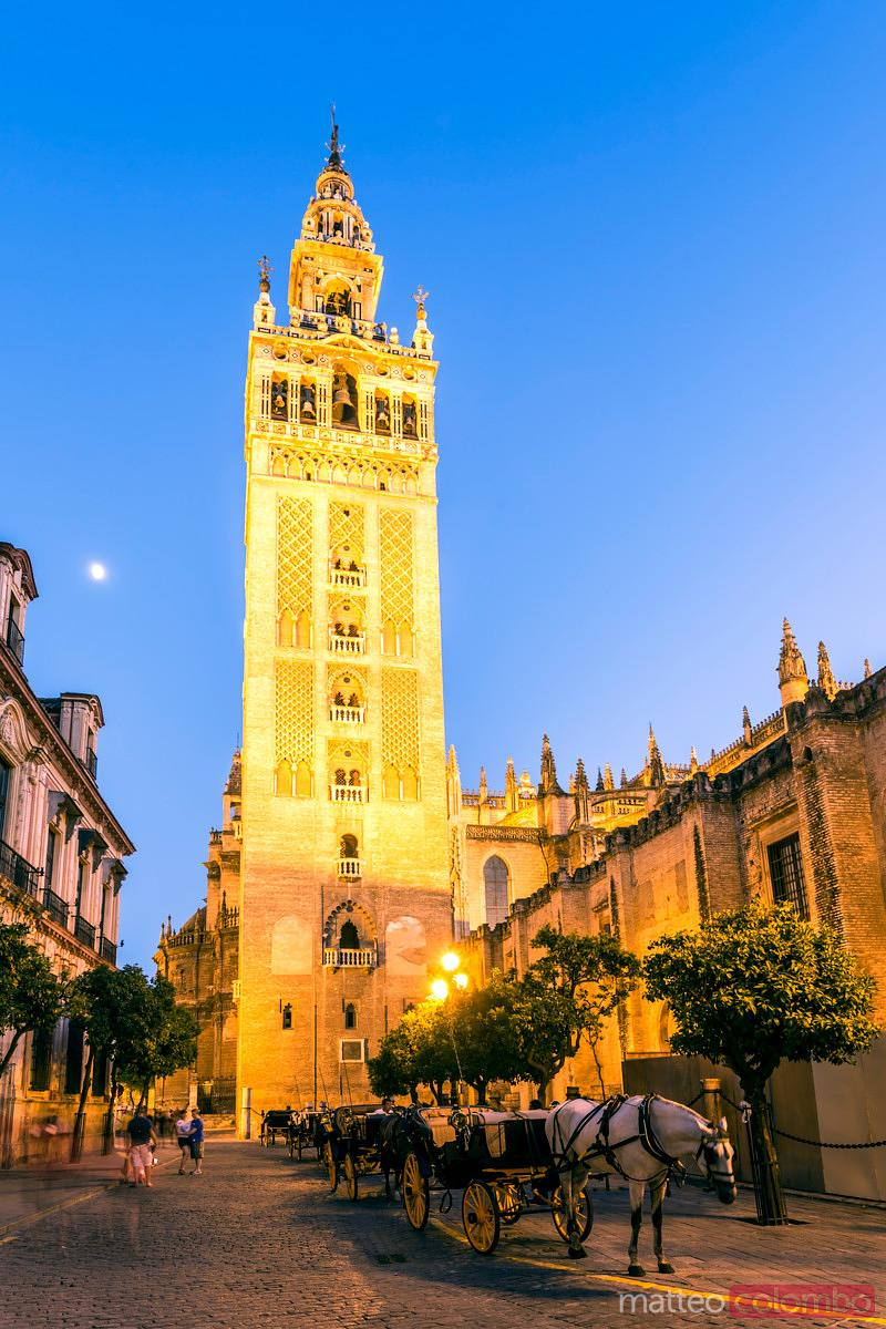 La Giralda (bell tower) and cathedral at dusk, Seville, Spain