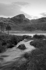 Beck and Tarn