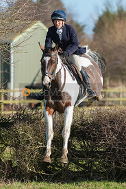 Follower on coloured horse jumping the first hedge