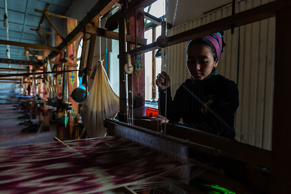 Woman Weaving Silk Fabric in the Traditional Patterns of the Fergana Valley