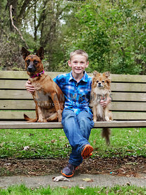 boy sitting on park bench with two dogs