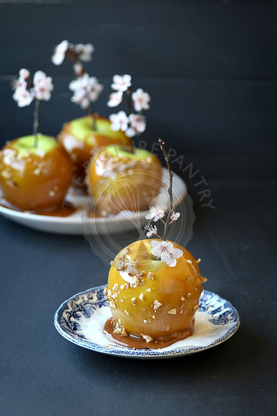 Caramel toffee apples with walnuts on wooden stick