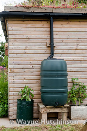 Hutchinson Photography - Farm Images | garden shed with soil