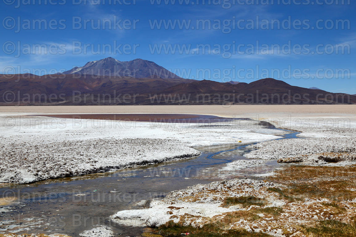 Stream across Salar de Carcote and Aucanquilcha volcano, Region II, Chile