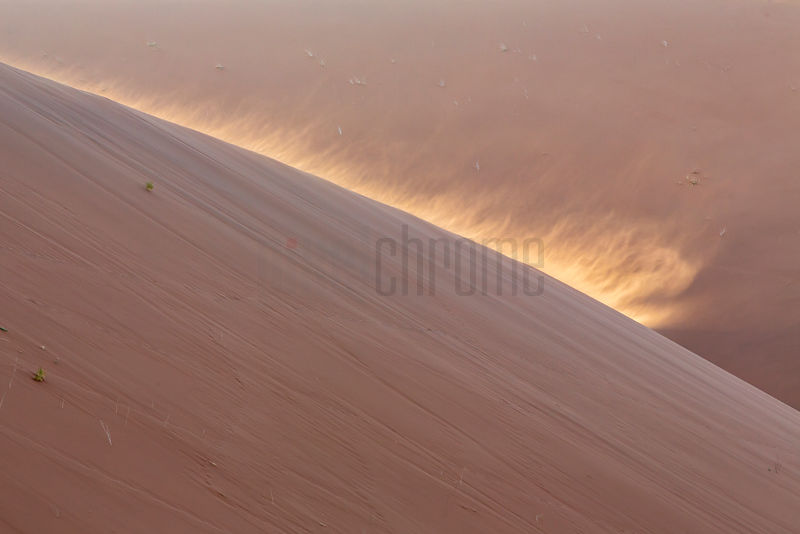 Windswept Dune at Dead Vlei